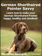 german-shorthaired-pointer-ebook